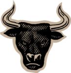 bull-headed