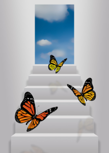 butterflies into the unknown