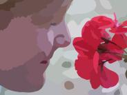 smell lthe roses